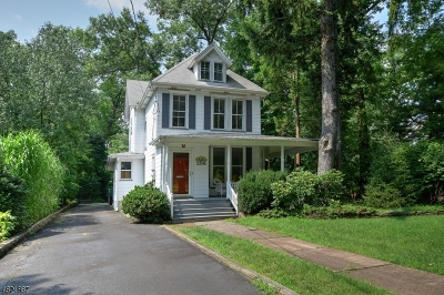 Westfield Town Single Family Home For Sale: 256 W Dudley Ave