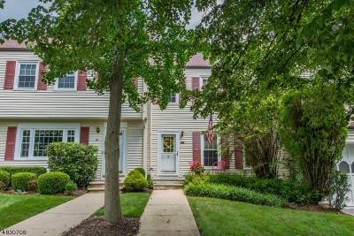Mendham Boro, Mendham Twp. Condo/Townhouse For Sale: 48 Pembroke Dr