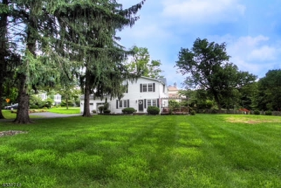 Randolph Twp. Single Family Home For Sale: 84 Mt Pleasant Tpke