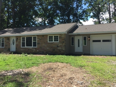 Flemington Boro, Raritan Twp. Single Family Home For Sale: 119 Hwy 202/31