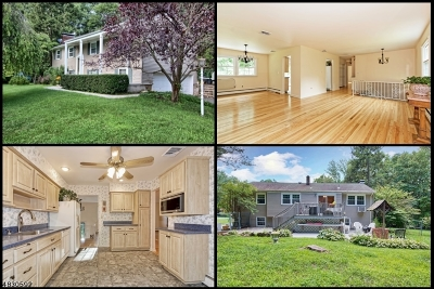 Rockaway Twp. Single Family Home For Sale: 1 Northlea Dr