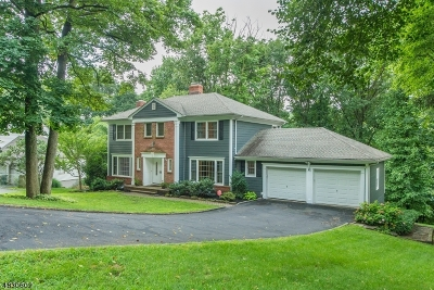 Berkeley Heights Single Family Home For Sale: 45 Ridge Dr