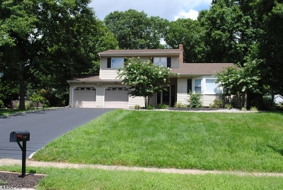 Bridgewater Twp. NJ Single Family Home For Sale: $419,900
