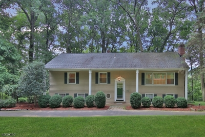 Morris Twp. Single Family Home For Sale: 36 North Star Drive