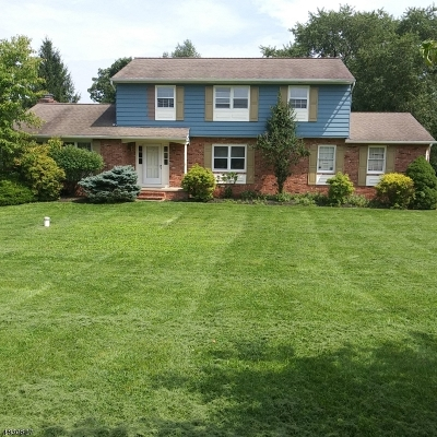 Flemington Boro, Raritan Twp. Single Family Home For Sale: 31 Barley Sheaf Rd