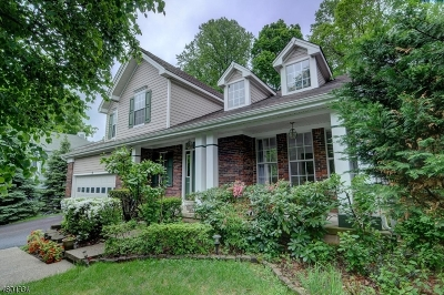 Bernards Twp. NJ Rental For Rent: $3,950