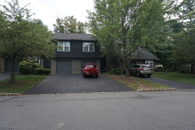Montgomery Twp. Condo/Townhouse For Sale: 18-B Evert Ct