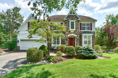 Green Brook Twp. NJ Single Family Home For Sale: $735,000