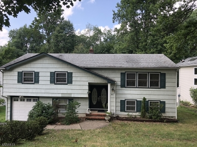 Livingston Twp. Single Family Home For Sale: 46 Edgemere Rd