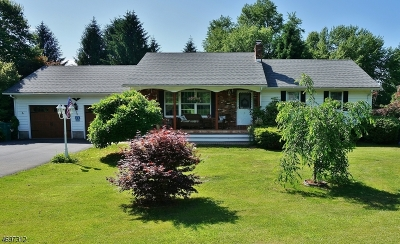 Sussex County Single Family Home For Sale: 5 Coss Lane