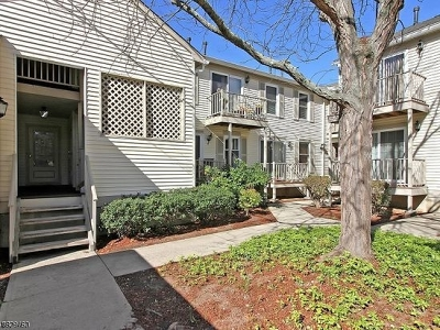 Bernards Twp. Condo/Townhouse For Sale: 39 Commonwealth Dr