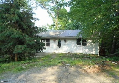 Sussex County Single Family Home For Sale: 901 Tulip Trl