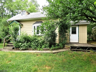 Sussex County Single Family Home For Sale: 1059 County Route 521