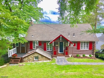 Sussex County Single Family Home For Sale: 48 Birch Pky