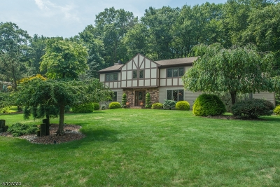 Morris County Single Family Home For Sale: 7 Williams Rd