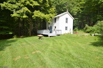 Sussex County Single Family Home For Sale: 17 Richards St