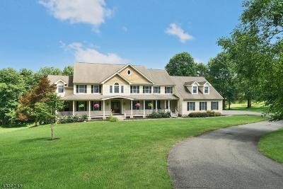 Morris County Single Family Home For Sale: 5 Wortman Way