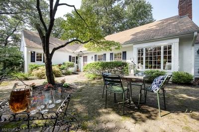 Mountain Lakes Boro Single Family Home For Sale: 46 Lake Dr