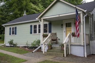 Clinton Town Single Family Home For Sale: 8 Alton Pl