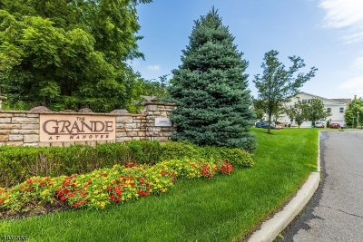 Hanover Twp. Condo/Townhouse For Sale: 1309 Meadow Brook Ct