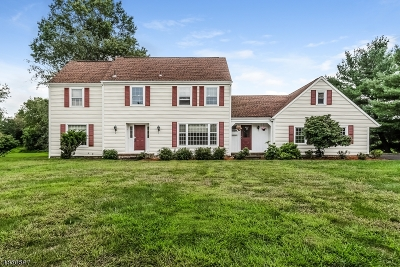 Branchburg Twp. Single Family Home For Sale: 15 Arrowhead Dr