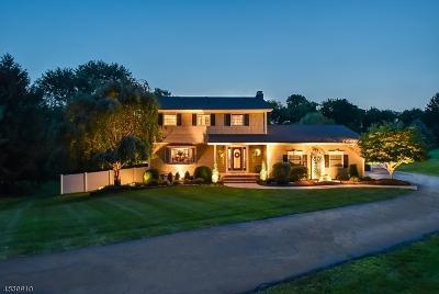 Clinton Twp. Single Family Home For Sale: 4 Muirfield Ln