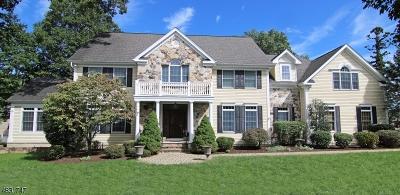 Morris Twp. Single Family Home For Sale: 25 Spencer Dr