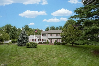 Morristown Town, Morris Twp. Single Family Home For Sale: 141 Lake Rd