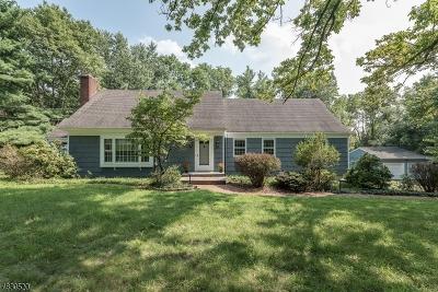 Bridgewater Twp. Single Family Home For Sale: 2118 Primrose Ln
