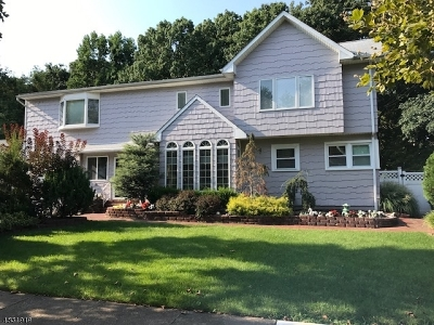 Springfield Single Family Home For Sale: 25 Laurel Dr