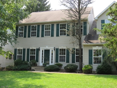Bridgewater Twp. Single Family Home For Sale: 11 Burr St