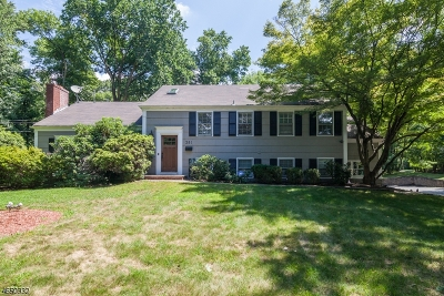 Livingston Single Family Home For Sale: 381 Walnut St