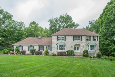 Sparta Twp. Single Family Home For Sale: 20 Andrea Ct