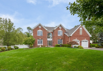 Mount Olive Twp. Single Family Home For Sale: 7 Fernwood Ct