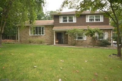 Warren Twp. Single Family Home For Sale: 11 Conklin Ln