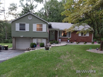 Sparta Twp. Single Family Home For Sale: 90 Alpine Trl