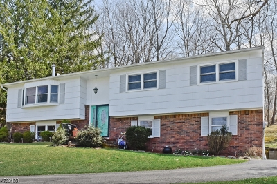Sparta Twp. Single Family Home For Sale: 17 Warren Ct