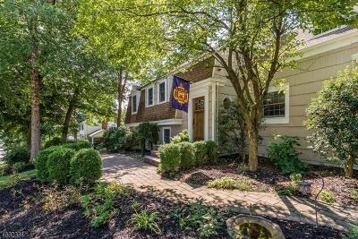 Morris Twp. Single Family Home For Sale: 16 Powder Horn Dr