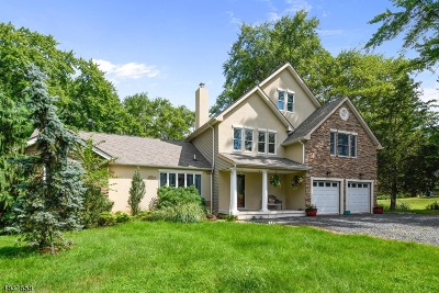 Bridgewater Twp. Single Family Home For Sale: 3 Drysdale Ln