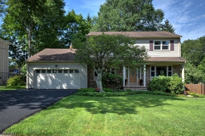 Mendham Boro, Mendham Twp. Single Family Home For Sale: 68 Mountain Ave