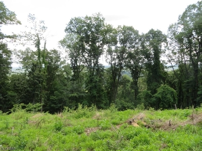 Bridgewater Twp. Residential Lots & Land For Sale: 78 Hillcrest Rd