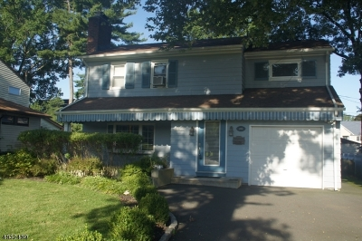 Springfield Single Family Home For Sale: 208 S Springfield Ave