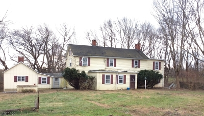 Alexandria Twp. Single Family Home For Sale: 52 Airport Rd