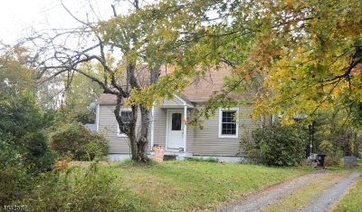 Branchburg Twp. Single Family Home For Sale: 73 North Branch River Rd