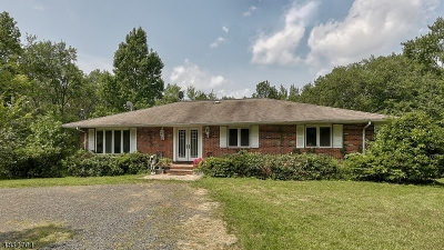 Warren Twp. Single Family Home For Sale: 19a Mountain Ave