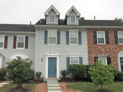 Bridgewater Twp. Condo/Townhouse For Sale: 2703 Pinhorn Dr