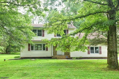 Bridgewater Twp. Single Family Home For Sale: 792 Garfield Ave