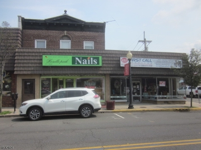 Roselle Park Boro Commercial For Sale: 121 Chestnut St #121