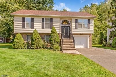 Hanover Single Family Home For Sale: 54 Reynolds Ave