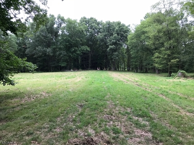 Chatham Boro, Chatham Twp., Chester Boro, Chester Twp., Harding Twp., Long Hill Twp., Mendham Boro, Morris Twp., Randolph Twp., Washington Twp., Bedminster Twp., Bernards Twp., Bernardsville Boro, Far Hills Boro, Peapack Gladstone Boro, Warren Twp. Residential Lots & Land For Sale: 441 Southern Blvd
